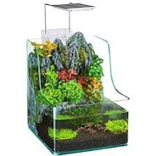 aquarium plant filtration tank