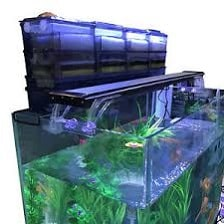 aquarium trickle filtration
