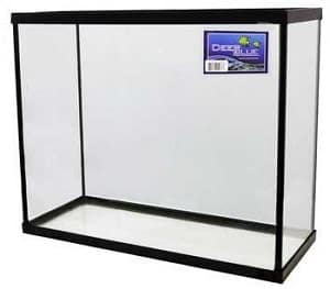 40 gallon saltwater tank