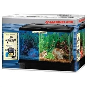 best 20 gallon aquarium kit
