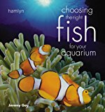 choosing fish for aquarium