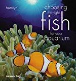 choosing fish for aquarium