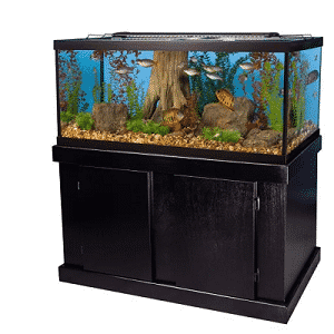 best 75 gallon aquarium