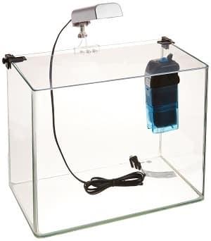five gallon fish tank