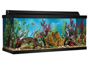 Top Fin 75 Gallon Hooded Aquarium