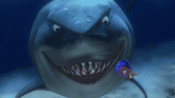 bruce from finding nemo